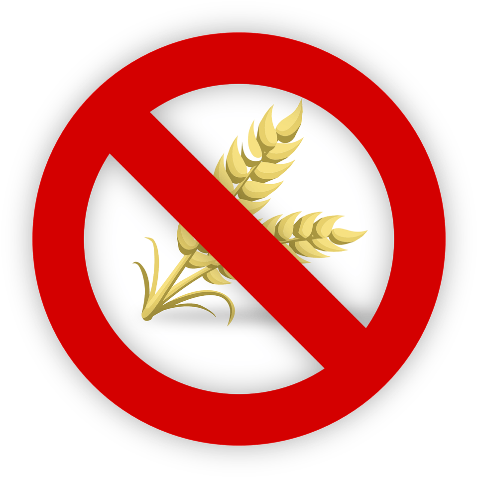 The Gluten-Free Lifestyle